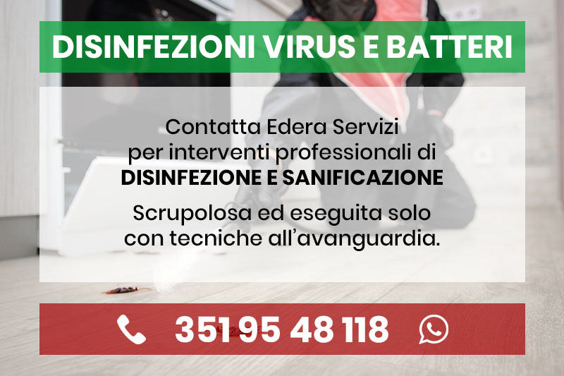 Edera servizi disinfezioni professionali